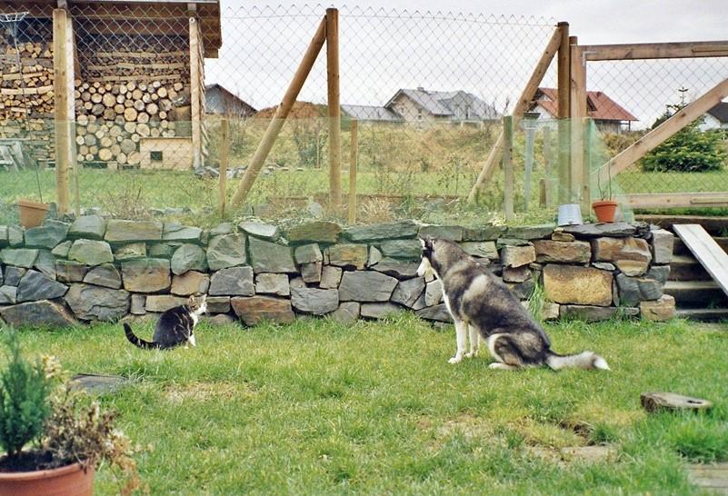 2004-12_Anji_und_Chica_warten_auf_Beute