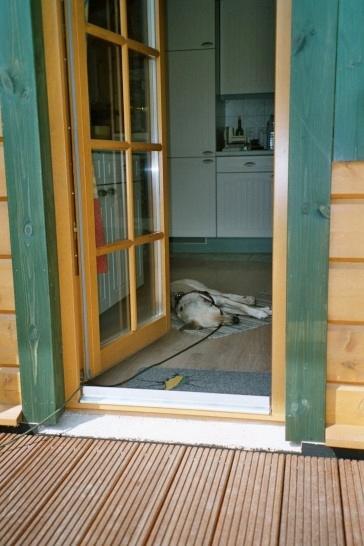 2004-06_Chester_döst_in_der_Küche