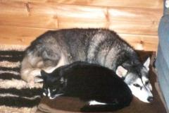 2004-10_Chica_und_Knuddel_2