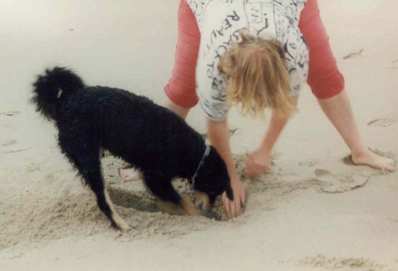 09/97 - Wo ist der Schatz? (Strand bei Burg Haamstede / NL)