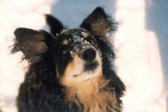 02/97 - spelen im Schnee
