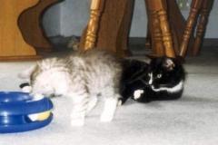 1998-07_Kimbas_Spielstunde_1