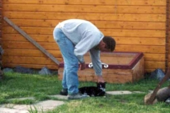 2003-05_Knuddel_beim_Nachbarn