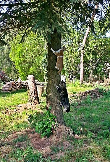 2015-05-14_Lillifee_und_Gizmo_erstürmen_die_Bäume