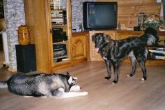 2004-12_Chicha_und_Lucky_spielen