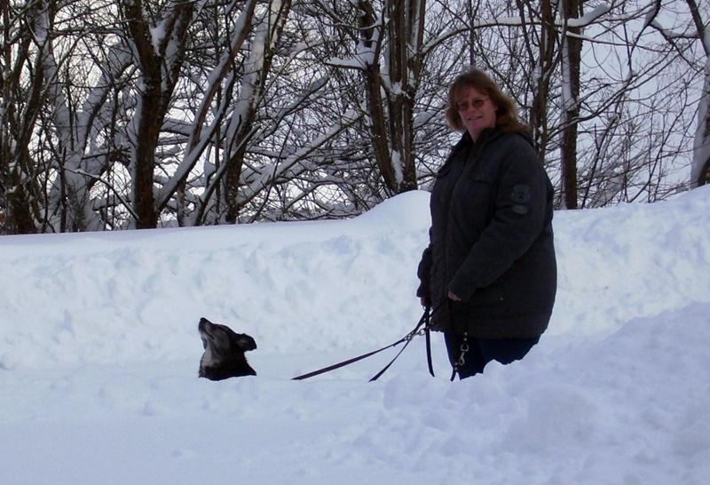 2010-01-30_im_hohen_Schnee_vom_Schwarzwald