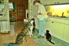 2008-04-06_Lupa_lernt_dass_es_Wurst_gibt