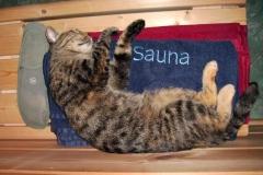 2009-08_Ronja_sauniert